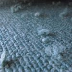 カーペットに付いた毛玉やペットの毛が気になるときの掃除方法をご紹介!